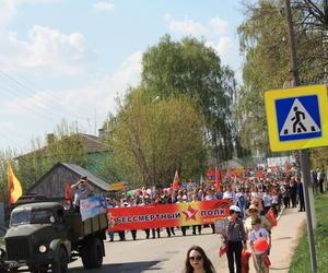 В Козловке отпраздновали 74-годовщину Великой Победы